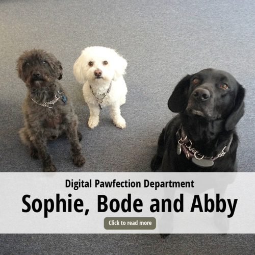 Sophie, Bode and Abby